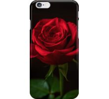 A Single Rose iPhone Case/Skin
