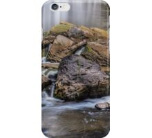 Webster Falls iPhone Case/Skin