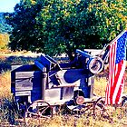 Cart With Flag by Tamara Valjean