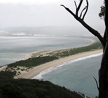 Mountain View of Port Stephens: In the Rain by Cheryl Parkes