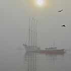 Margaret Todd in Fog, Bar Harbor, Maine by Dan Hatch