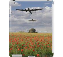 Over The Poppy Fields  iPad Case/Skin