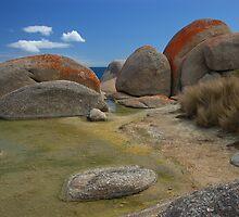 Rock Pool by Peter Hammer