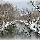 River Reflections by Monnie Ryan