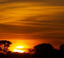 Golden Streaks by Clive