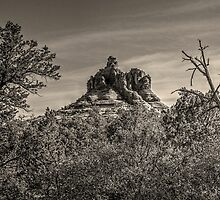 Bell Rock: Sedona, Arizona by Roger Passman
