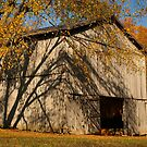 Tobacco Barn by Richard G Witham