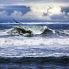 The Glory of Morning on the Oregon Coast by Diane Schuster