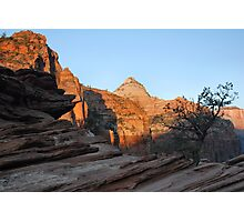 Early Zion Morning  Photographic Print
