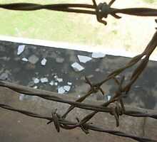 Barbed Wire by fortemute