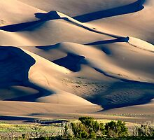 Great Sand Dunes National Park, Co. by Virginia Maguire