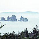 Cavendish, Trinity Bay, Newfoundland by George Cousins
