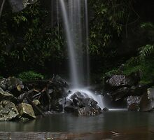 Waterfall - Mt Tamborine by Peter South