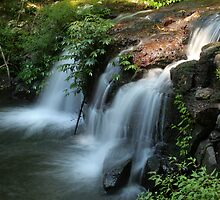 Waterfall - Queensland by Peter South