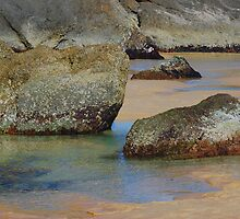 Rock Pools - Redhead Beach NSW by Bev Woodman