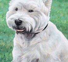 White West Highland Terrier by Nicole Zeug