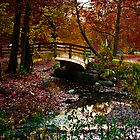 Bridge in the fall by ImagesbyShari