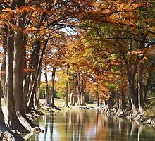 Guadalupe River Crossing - Fall by sharont