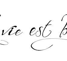 La Vie est Belle French typography by MariondeLauzun