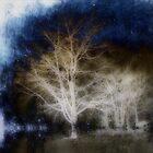 Cold Winter Night by MzScarlett