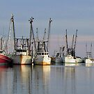Shrimp Fleet by Jane Best