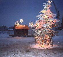 Christmas by TarasKokovsky