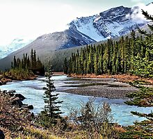 Bow River by Vickie Emms