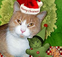 Merry Kitty Christmas by Elizabeth Burton