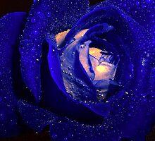 Blue Diamonds by Dawn B Davies-McIninch