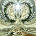 aa-WhiteWeb by webgrrl