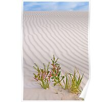Sand Dune - Western Australia Poster