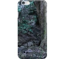 Lost in Labyrinth Forest iPhone Case/Skin