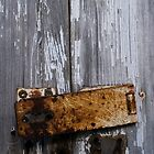 Barn Door by cforsythe