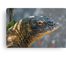 Komodo Monitor Canvas Print