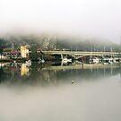 Tamar Basin Mist by David Henderson