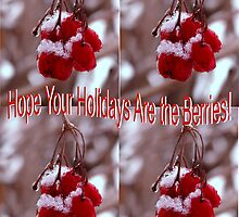 Hope Your Holidays are the Berries! by mnkreations