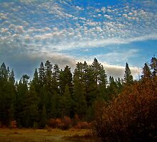 Puffy clouds over the High Sierra by Edward Henzi