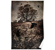 Crows on the Moor Poster