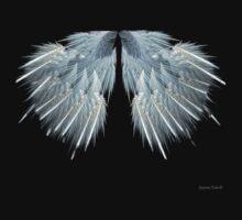 Angel Wings by DigitalDelights