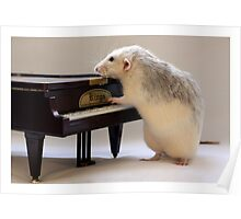 My new piano! Poster