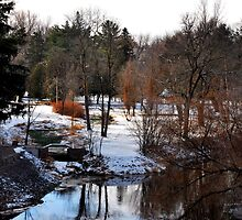 Pansy Patch Park in Snow by Robert Goulet