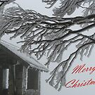 Merry Christmas From Mt. Buffalo by Jacqueline  Murphy