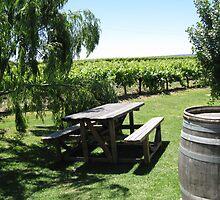 The Valley Vineyard by Rebecca Laffar-Smith