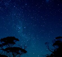 Starlight - South Australia by Stephen Permezel