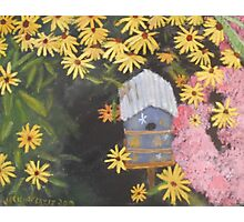 Bird house and Black Eyed Susans Photographic Print