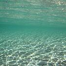 Clear Water by Aengus Moran
