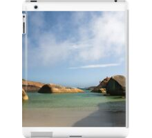 Elephant Cove iPad Case/Skin