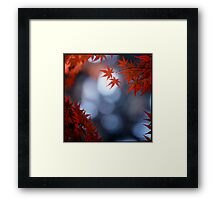 Autumn colours; Yoyogi Park, Tokyo, Japan Framed Print