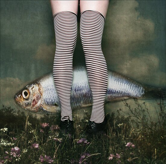 untitled by kitsch
