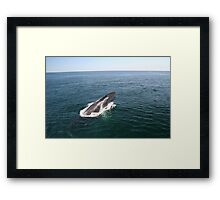 A Whale of a Tale!  Part 2, please read in order! Framed Print